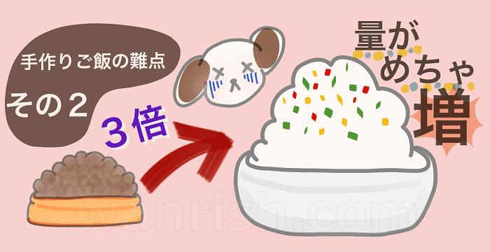 ワンちゃんのご飯を手作りするのがおすすめできない理由2