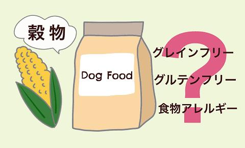 ドッグフードの穀物は悪者ではない!優秀な理由をペットフード安全管理者が解説