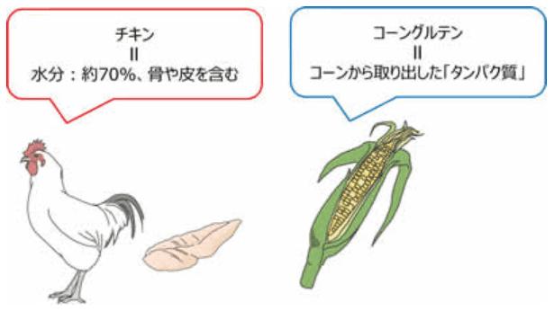 タンパク質源の消化性を比較